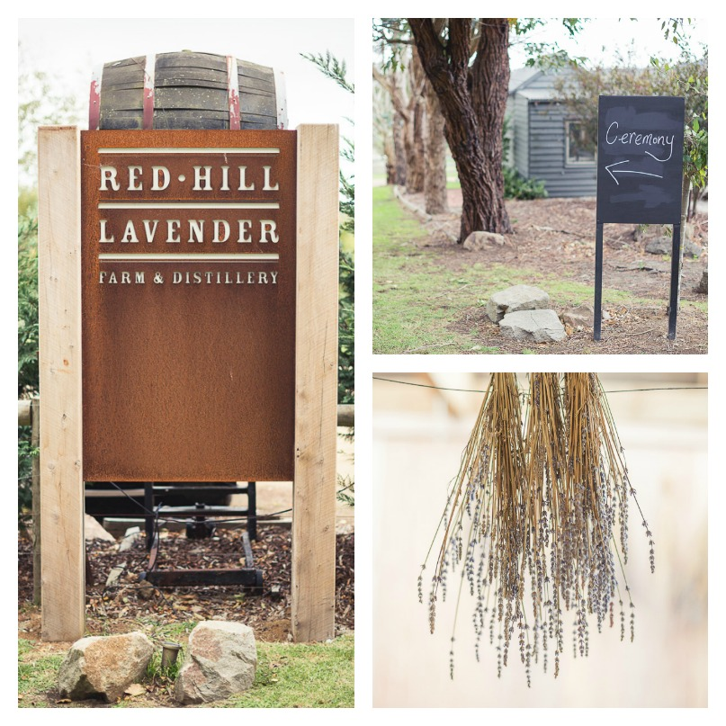 red-hill-lavendar-farm, red-hill-wedding
